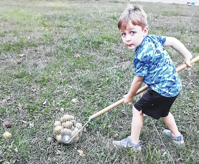 """Four-year old Asher Holland is out to make a fast buck picking up black walnuts with his """"Walnut Weasel."""" Asher was cleaning up his grandparent's yard next to Fifth Third Bank in Hillsboro. He is the son of Mandy and Larry Holland of Hillsboro."""
