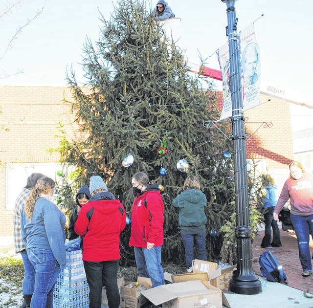 Members of the Hillsboro FFA braved the cold temperatures Wednesday to help the city of Hillsboro and the Hillsboro Uptown Business Association decorate the city Christmas tree. The 22-foot-tall Norway spruce was donated to the city by Rhoades Ridge Tree Farm near Hillsboro, but Jessica Rhoades told The Times-Gazette that since the trees on their farm are a couple of years away from being mature enough for harvest, they went to a tree farm in Hamersville to cut the Hillsboro Christmas tree.