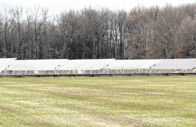 This view shows construction of the solar panels at the Hillcrest Solar Farm on Greenbush-East Road near Buford.