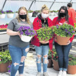 Annual FFA Spring Flower Sale begins