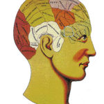 The phrenology craze