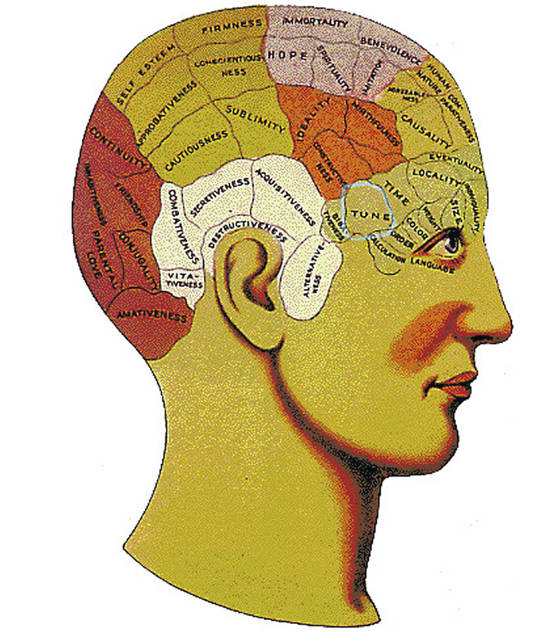 This graphic shows what areas of the brain phrenologists believed were impacted by various events.