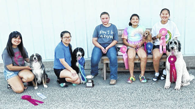 The Canine Commanders 4-H Club members participating at the Ohio State Fair were Kyah Chaney, Kaylei Sanderson, Kourtney May, Jayah Chaney and Emma Sanderson. Kyah Chaney placed second in Novice B with her miniature Australian Shepherd, Neptune, and third in dog skillathon in the 16-year-old category. Kaylei Sanderson placed first in Intermediate Showmanship A with her Aussiedoodle, Codi. May placed second in Beginner Novice B and third in Rally Novice B with her golden retriever, Caprice. Jayah Chaney placed first in Pre Novice with her poodle, Tieko; 2nd in dog skillathon for 11-year-olds, fourth in Junior Showmanship B, and earned her second Ohio State Fair Dog Champion Exhibitor Award. Emma Sanderson placed second in intermediate Showmanship B and fourth in Beginner Novice B, with her sheepadoodle, Max, and earned her first Ohio State Fair Dog Champion Exhibitor Award. Not pictured is Sara Newsome, who placed second in the dog skillathon in the 17-year-old category.