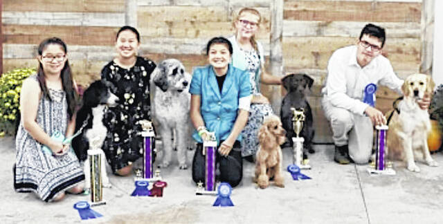 Pictured (l-r) are the Highland County Junior Fair Dog Show Showmanship winners: Kaylei Sanderson, first, Senior Showmanship A; Emma Sanderson, first, Intermediate Showmanship B and Reserve Sweepstakes, first, Junior Showmanship A; and Jayden Lanning, first, Intermediate Showmanship B.