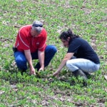 Darke County crops spared, for now