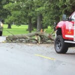 Afternoon thunderstorm knocks trees, lines onto county roads