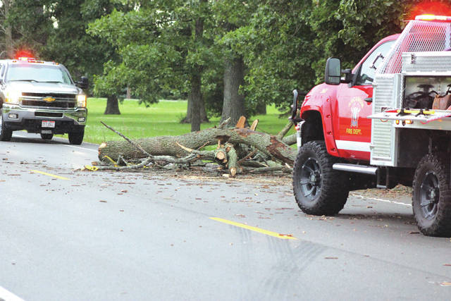 Emergency crews Tuesday worked to remove a tree which had fallen on State Route 49 near Hogpath Road. Crews cleared felled trees, power lines and poles across multiple roads in Darke County due to an afternoon thunderstorm that moved through the area.
