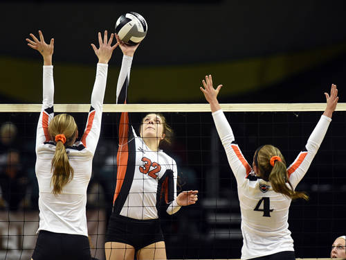 Versailles senior Danielle Winner was named third team all-Ohio by the Ohio High School Volleyball Coaches Association.