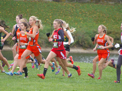 Versailles' girls cross country runners compete in the Ohio High School Athletic Association regional meet on Saturday in Troy.