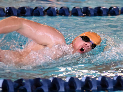Ansonia's Connor Stachler swims during the Cross County Conference swim meet on Sunday at New Carlisle Sports & Fitness.