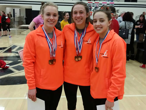 Madison Ahrens, Jadyn Barga and Ellie Barga will represent Versailles at the Ohio High School Athletic Association state gymnastics meet.