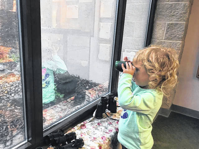 Courtesy photo Calling all birders! Join Darke County Park District, and participate in Project FeederWatch, every Tuesday from 9:30 to 11:30 a.m. and Wednesday from 3 to 5 p.m.