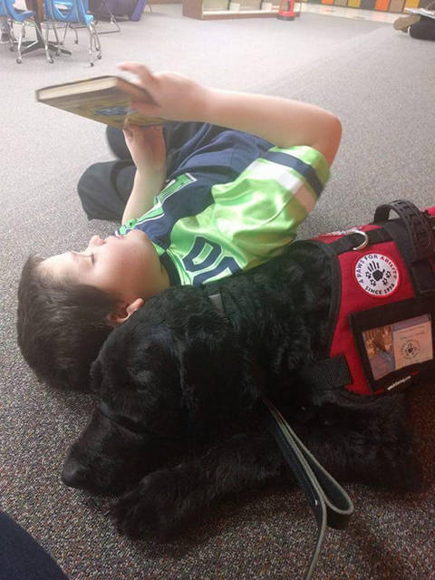 Bradford Public Library will host Stephanie and Joe Welter and their service dog, Mulder.