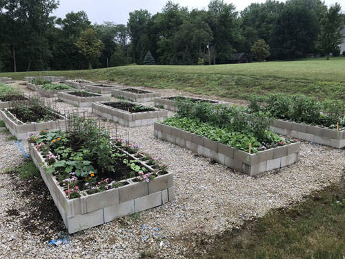 The rented beds in the new community garden have been planted with a variety of fruits, vegetables and herbs.