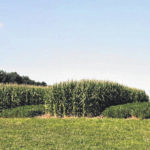 No-Till Field Day slated for Aug. 29 in Wooster