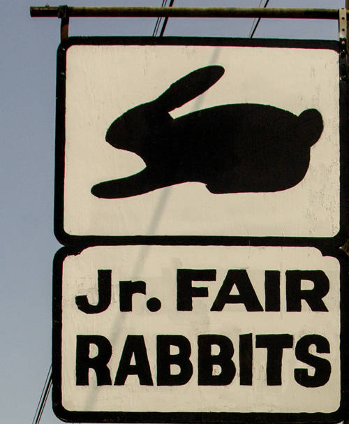 Two rabbits died from disease at the Miami County Fair, but officials in Darke County are confident their precautions will prevent any outbreaks.