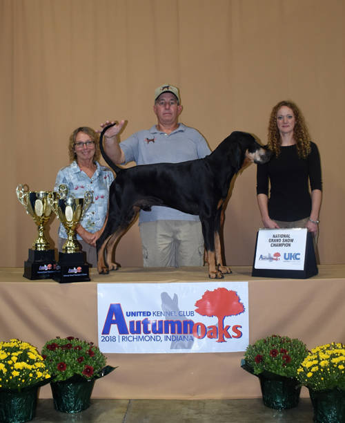 Greenville resident Joe Powers and his American black and tan coonhound Lucky Ole Son earned top honors at the 2018 United Kennel Club Autumn Oaks event.