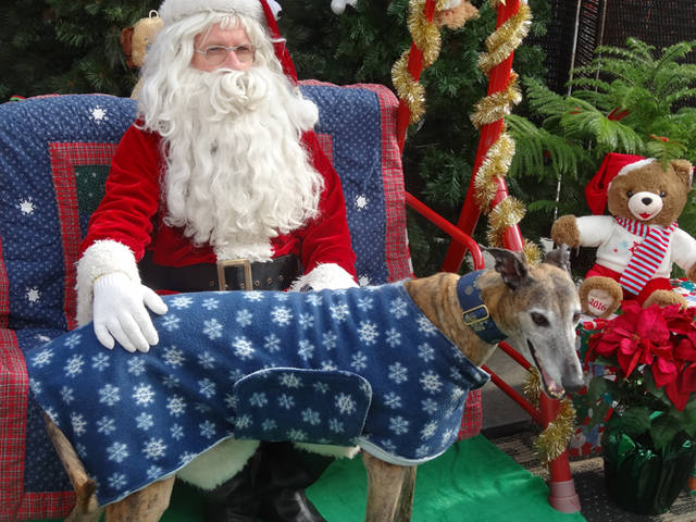 Individuals can have their pet's picture taken with Santa Claus from 10 a.m. to 2 p.m. Nov. 17 at Greenville Walmart in the Garden Center.
