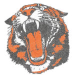Lady Tigers come up short at Tippecanoe