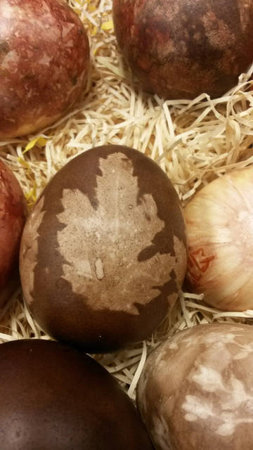 Darke County Parks will host an egg dyeing program at 1 p.m. April 13 at Darke County Parks' Bish Discovery Center.