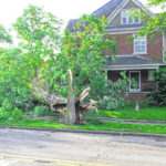 EF1 tornado confirmed in New Madison
