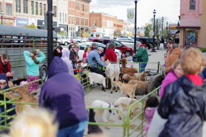 A family-friendly petting zoo will be provided by Idle-Hour Ranch at the First Friday event.