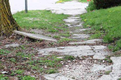 Greenville City Council narrowly passed an ordinance in August outlining guidelines for repairing or replacing sidewalks.