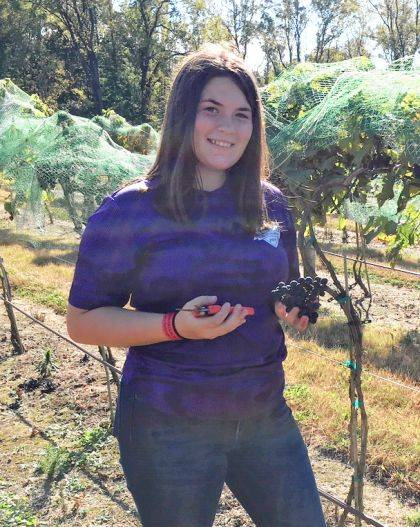 Kim Fourman, FFA reporter, had fun picking grapes.