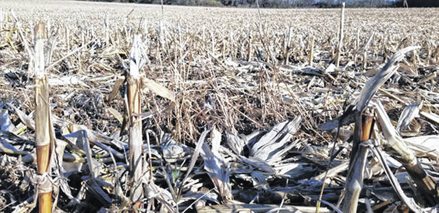 Bethany J. Royer-DeLong | Darke County Media A hot, dry spell became a blessing in disguise for some area farmers as harvest season comes to a close in Darke County.