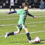 Greenville Youth Soccer Clinics starting