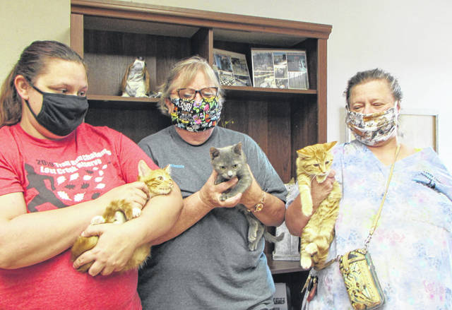 Darke County Human Society Director Sherry Burk and volunteers with adoptable cats