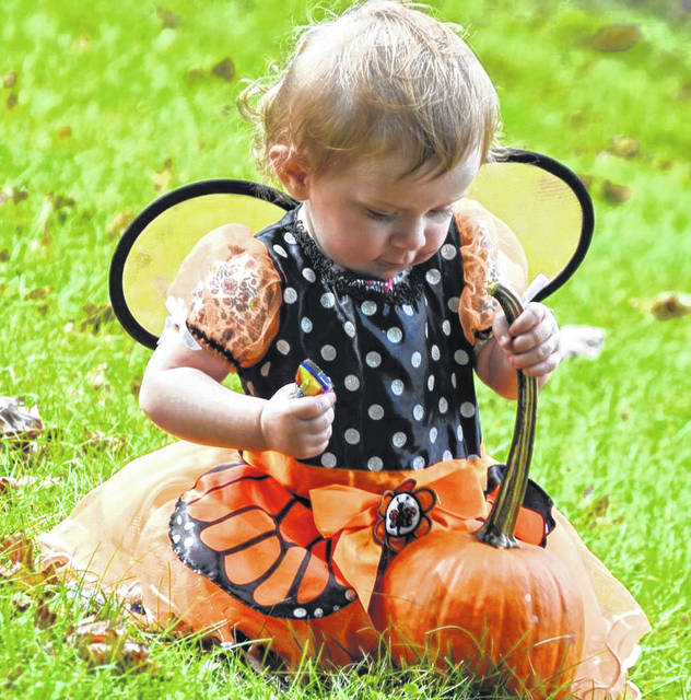 Darke County Park's Great Pumpkin Hunt will begin Saturday, Oct. 24.