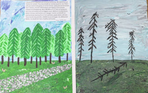 Darke SWCD announces poster contest winners