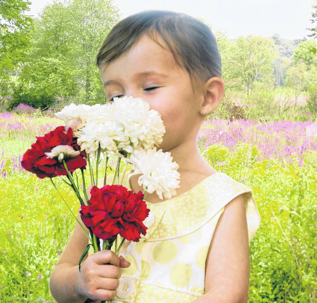 Since 1914, Mother's Day in the U.S. has been celebrated on the second Sunday each May. Red and white carnations are traditionally given to honor the living and remember the deceased.