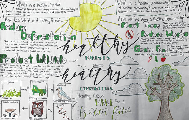Grades 7 and 8 First Place SWCD poster, submitted by Madeline Lance, Greenville Middle School.