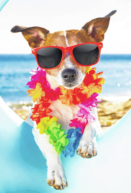 """As the """"dog days"""" of summer heat up this month, Memory Lane invites residents to attend its annual """"Summer Luau"""" dance Monday, July 26, from 1 to 3:30 p.m., at the VFW Hall, located at 219 N Ohio Street, in Greenville."""