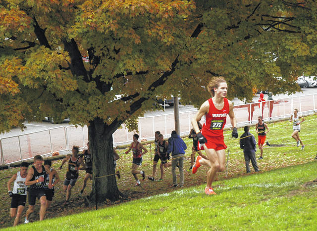 <strong>Lucas Houk climbs the steep hill ahead of a pack of runners the Troy regional cross country race.</strong>