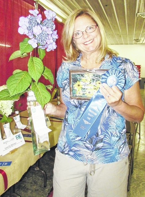 The 2015 Champaign County Fair Best Cut Specimen winner is Jill Michael of Urbana with a hydrangea.