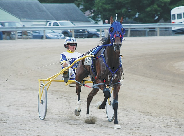Pictured is harness racing action from Sunday at the Champaign County Fair. Racing will take place at the fair on Tuesday, Wednesday and Thursday with post time each night at 6:30 p.m.