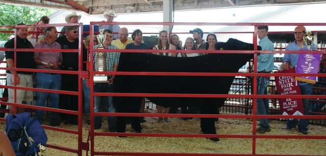Colby Watson's 4-H Market Steer (Champion) sold for $4,500 to Maine's Towing, Tech II, Perpetual Federal Savings Bank and Sheriff Matt Melvin in memory of Davy Channell.