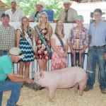 Champaign County Fair Swine Sales