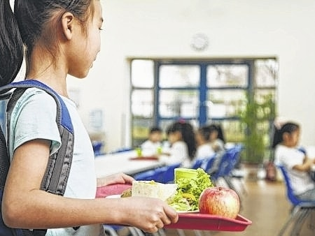 Both school lunches and packed lunches can be healthy provided a few rules are followed.