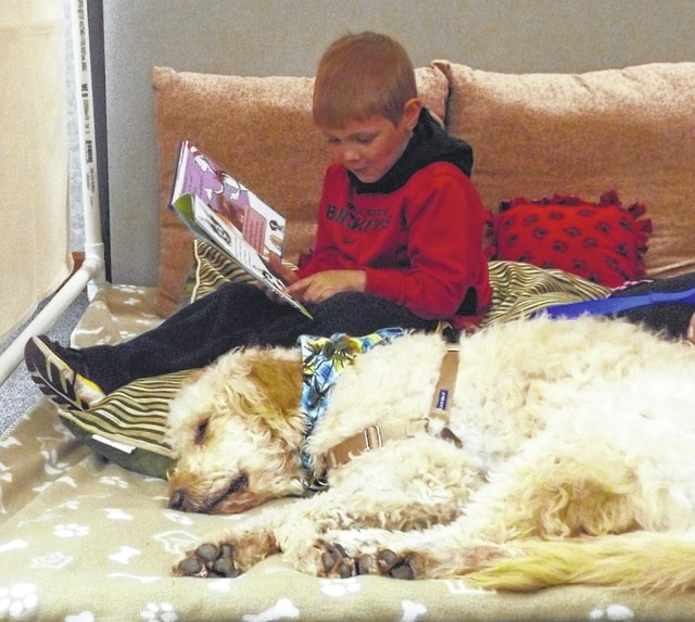 Reader Fox Byerly must have a soothing voice. His furry friend found this previous reading session extremely relaxing.