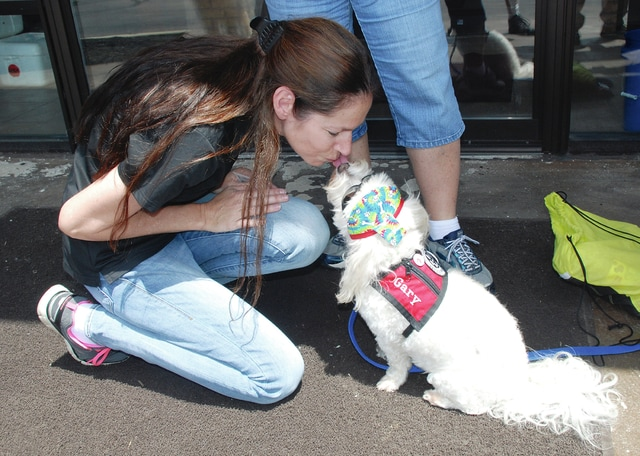 Gary, a therapy dog with Best Friends Pet Assisted Therapy, greets CRSI employee Lisa Tullis during a visit to CRSI in Urbana.