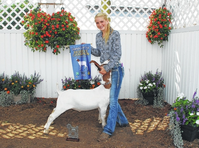 Kyndall Metz won Reserve Grand Champion Market Goat and was a Division III Champion.