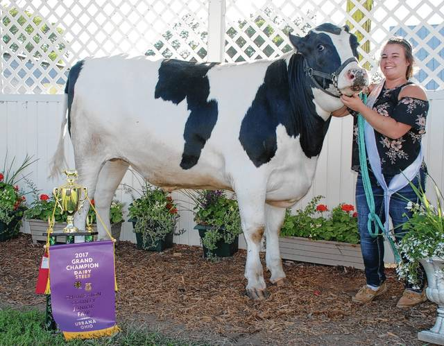 Katie Midgley won the Grand Champion Dairy Steer title and was named the Dairy Ambassador.