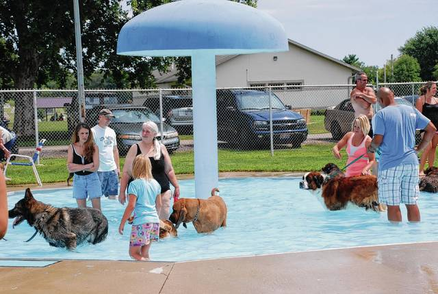 Pets and their owners cool off in the kiddie pool during a Fido's Swimfest in 2015.