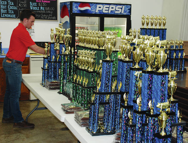 Shem Pond assists Ohio State University Extension staff with sorting the trophies for the Champaign County Junior Fair shows. He was working in the 4-H building prior to the opening of the fair. The fair officially opened today and ends Aug. 11.