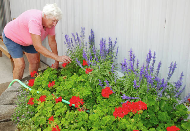 Joyce Prosser tends to one of the many flower beds at the Champaign County Fairgrounds. Prosser was one of a growing number of people preparing the grounds and various event venues for the 177th Champaign County Fair, which opens Friday, Aug. 3, and continues through Friday, Aug. 10.