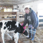 Becoming a micro-dairy